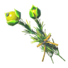File:Breath of the Wild Herbs Hyrule Herb (Icon).png