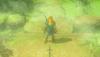 Link Excalibur BOTW