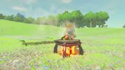 Cucinare Screenshot - The Legend of Zelda Breath of the Wild
