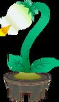 Fleur de la Ville