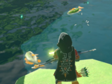 Poisson (Breath of the Wild)