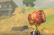 Barril explosivo 1 BotW