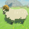 BOTW Encyclopedie Mouton des plateaux