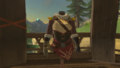 Breath of the Wild Brazen Beak Snowquill Tunic (Rito Village).png