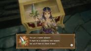 Hyrule Warriors Sealed Weapon Zelda (Level 3 Rapier)