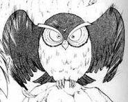 Hibou Manga