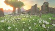 Ruinen BoTW VP