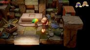 TLOZ Link's Awakening screen 20