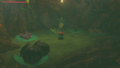 Breath of the Wild Shops Spore Store (Korok Forest).png