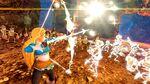 HWDE Zelda Botw Costume 2