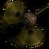 Trompette Skull Kid TP