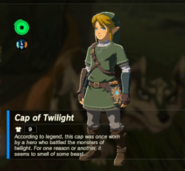 Breath of the Wild Hero's Clothes Twilight Princess (Armor Cap) Cap of Twilight (Inventory)