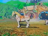 The Royal White Stallion