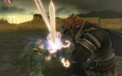 Combat final (Twilight Princess)