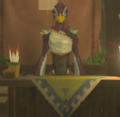 Breath of the Wild Rito Armor Shopkeep Nekk (Brazen Beak).png