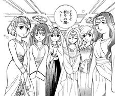 Siete Doncellas Manga FSA