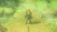 BotW Link before Master Sword