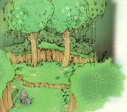 Forêt de Firone 3 SS HH