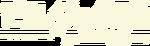 BotW Logo japonés