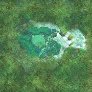 Faron Woods Aerial View (Skyward Sword)