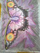 Majora's butterfly