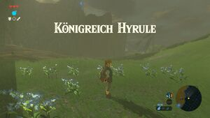 Hyrule K