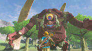 Hinox (Breath of the Wild)