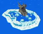 Ice Ring Island