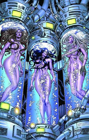Grimm Fairy Tales Unleashed Hunger Vol 1 3-PA