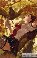 Grimm Fairy Tales Vol 1 27-C