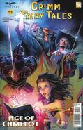 Grimm Fairy Tales Vol 2 13