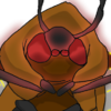 Head Lunaria