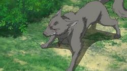 Hatsune's Metamorphosis