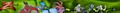 Thumbnail for version as of 10:01, September 1, 2010