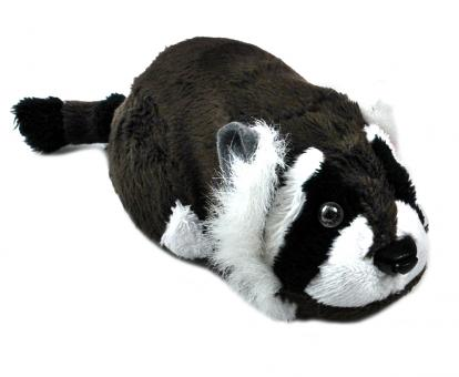 Rocco racoon