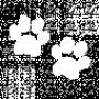 Zuri birthmark