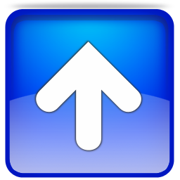 File:Up Button.png