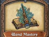 Wand Mastery