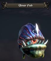 Ulmar fish