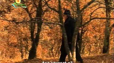 Limba gumuțasca (gomoțasca) - unicul argou rural din România
