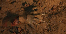 Freddy's Glove is Back