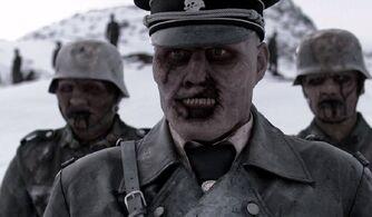 Полковник Х. 1