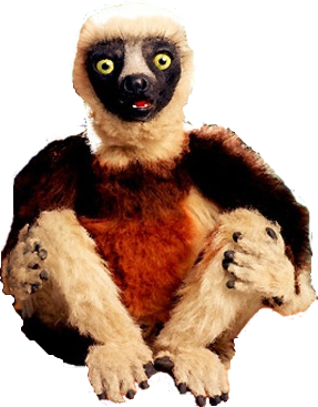 Zoboomafoo (character) | Zoboomafoo Wiki | FANDOM powered by