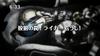 Zoids Wild - 12 - Japanese