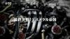 Zoids Wild - 49 - Japanese