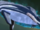 Unknown whale king.png
