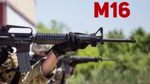 Zombie Apocalypse Weapons M16