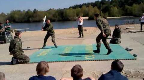 Royal Marines Unarmed Combat Display