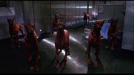 Стая зомби-псов