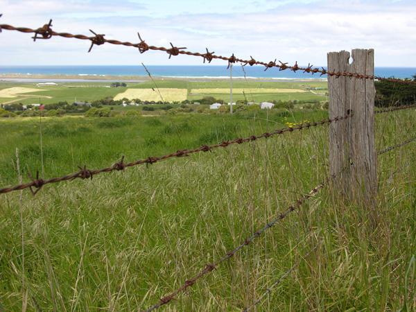 Image Barb Wire Fencejpg Zombiepedia FANDOM powered by Wikia